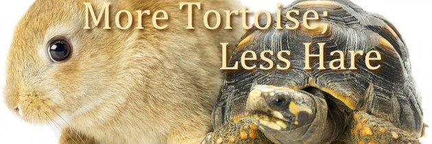 More Tortoise; Less Hare: