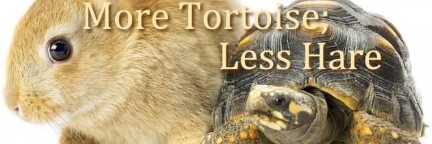 More Tortoise; Less Hare: